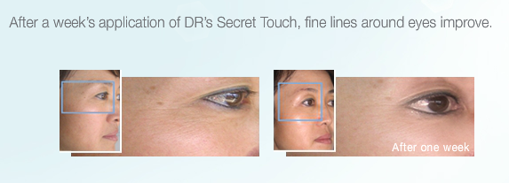 DR Secret Touch - Facial Massager